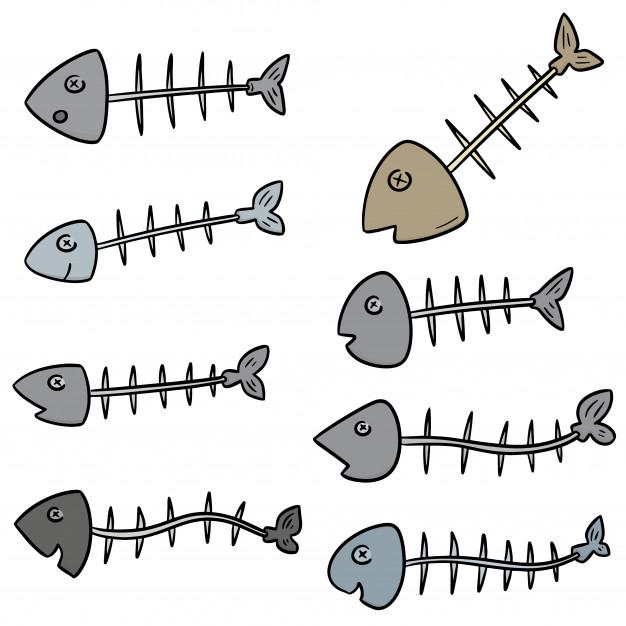 vector-set-fishbone_60352-2025